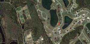 Photo of 266 Spicer Lake Drive, Holly Ridge, NC 28445 (MLS # 100180837)