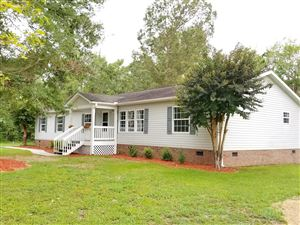 Photo of 323 Knollwood Drive, Hampstead, NC 28443 (MLS # 100178843)