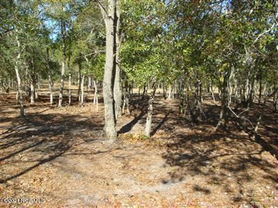 Photo of 638 Loreauville Drive SW, Supply, NC 28462 (MLS # 100258845)