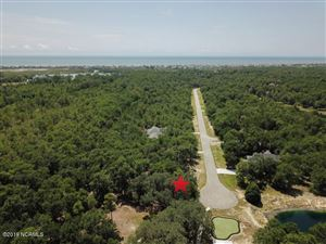 Photo of 2039 Bluefin Terrace SW, Supply, NC 28462 (MLS # 100179846)