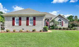 Photo of 209 Brascote Lane, Wilmington, NC 28412 (MLS # 100183848)