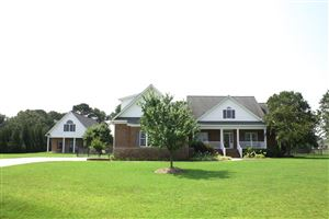 Photo of 1460 Devon Drive, Grimesland, NC 27837 (MLS # 100116851)