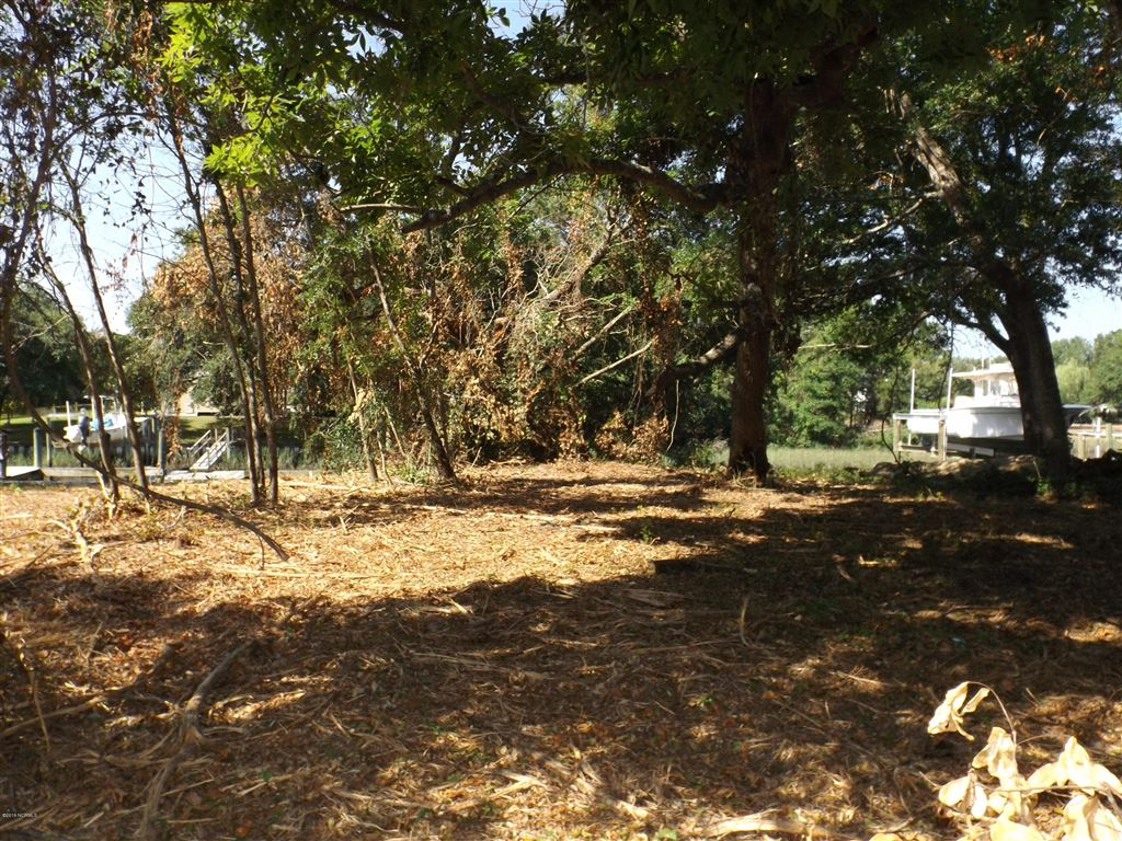 Photo of 3005 Anderson Drive SW, Oak Island, NC 28465 (MLS # 100167852)