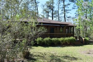 Photo of 124 Lacers Way, Currie, NC 28435 (MLS # 100159854)