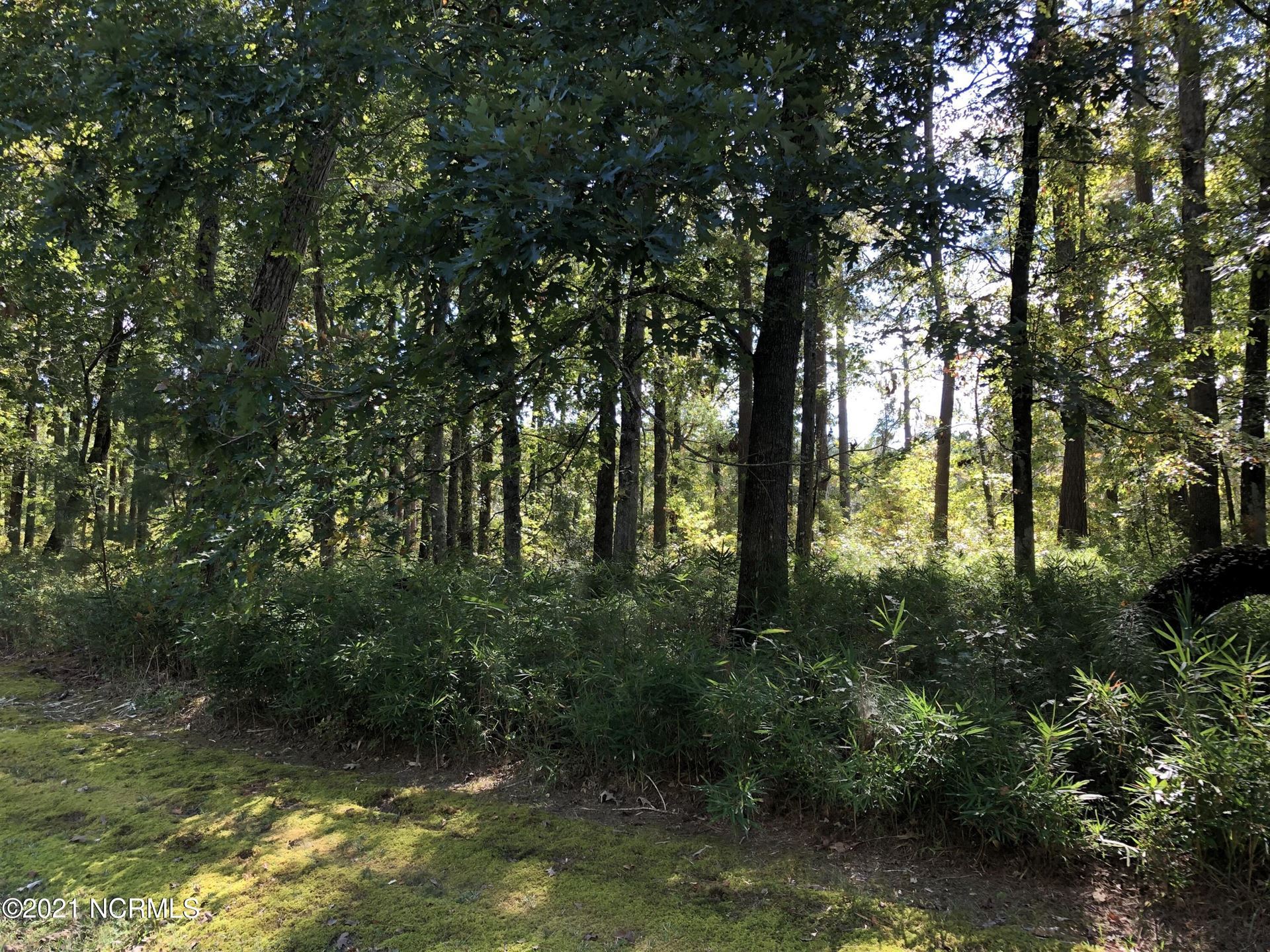 Photo of 24 North Creek Drive, Belhaven, NC 27810 (MLS # 100293854)