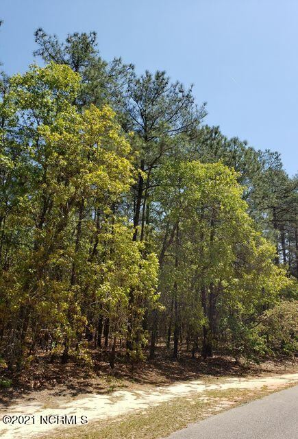 Photo of 11 Wildlife Lane, Wagram, NC 28396 (MLS # 100296856)