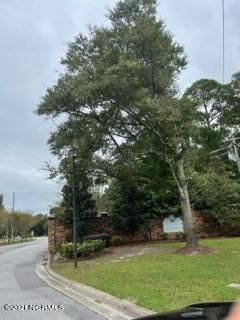 Photo of 358 Chadwick Shores Drive, Sneads Ferry, NC 28460 (MLS # 100294860)