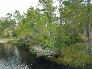 Photo of 231 Ash Road, Southport, NC 28461 (MLS # 100188863)