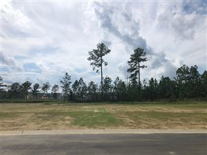 Photo of 5342 Barcroft Lake Drive, Leland, NC 28451 (MLS # 100179868)