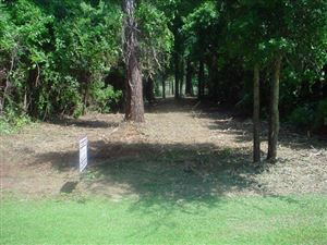 Photo of 357 Chadwick Shores Drive, Sneads Ferry, NC 28460 (MLS # 40205868)