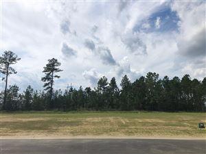 Photo of 5338 Barcroft Lake Drive, Leland, NC 28451 (MLS # 100179871)