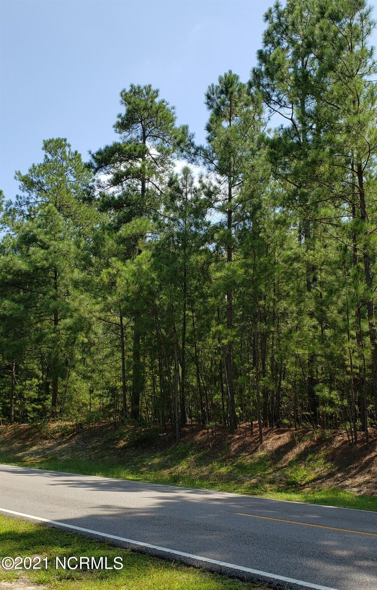Photo of 37 Peach Orchard Road, Wagram, NC 28396 (MLS # 100296871)