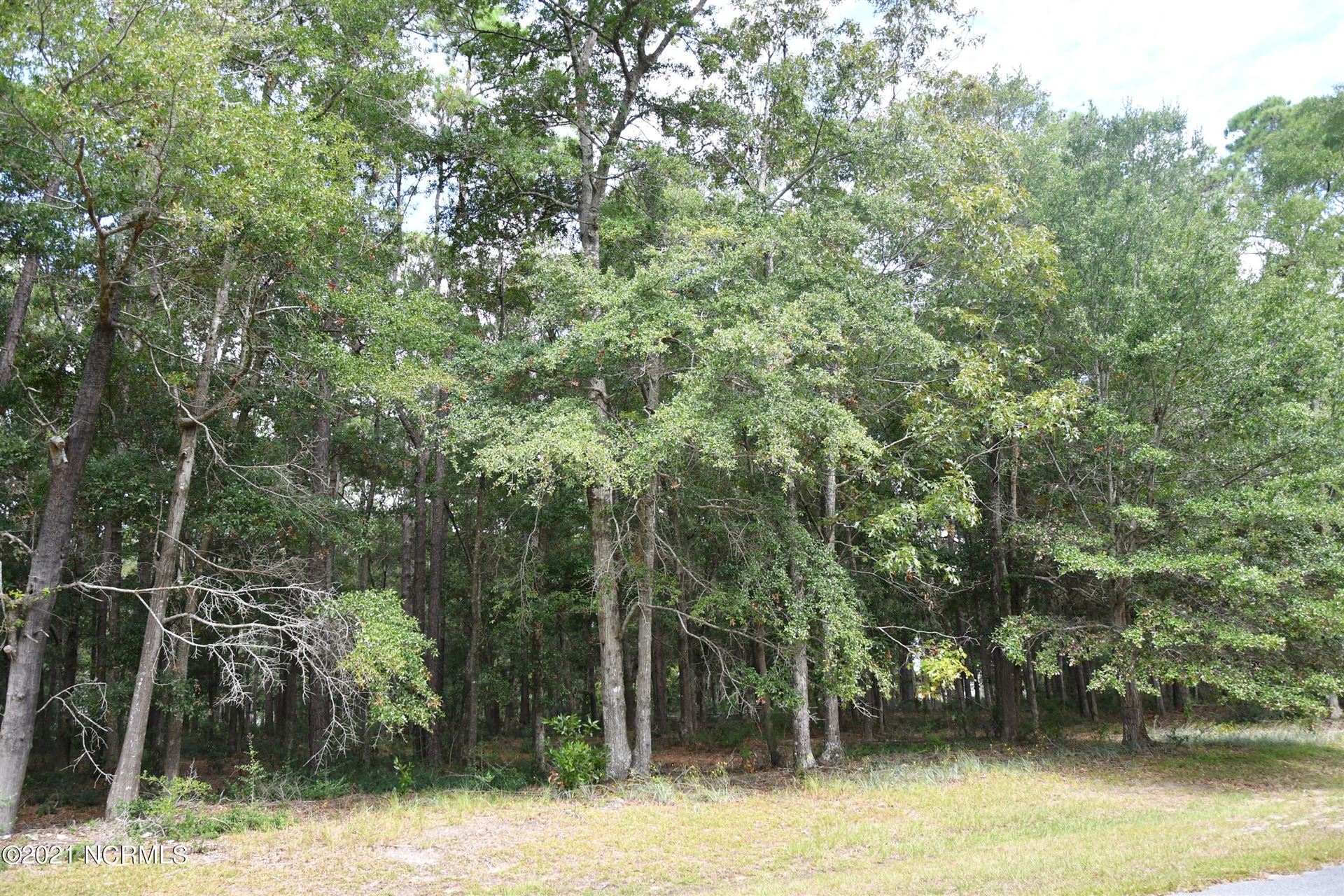 Photo of 3468 Eagle Crest Drive SW, Supply, NC 28462 (MLS # 100293872)