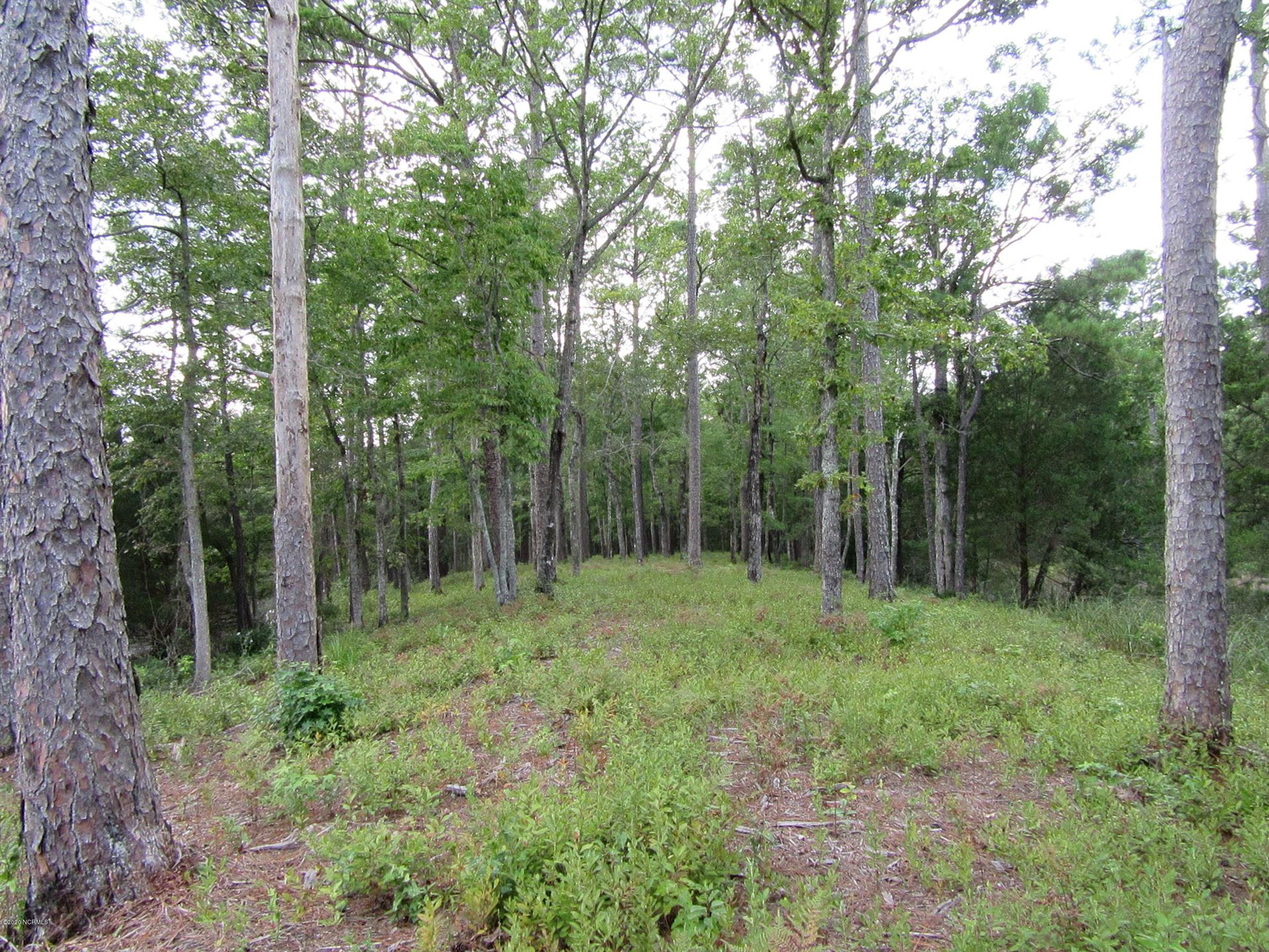 Photo of 671 Plantation Parkway, Oriental, NC 28571 (MLS # 100238873)
