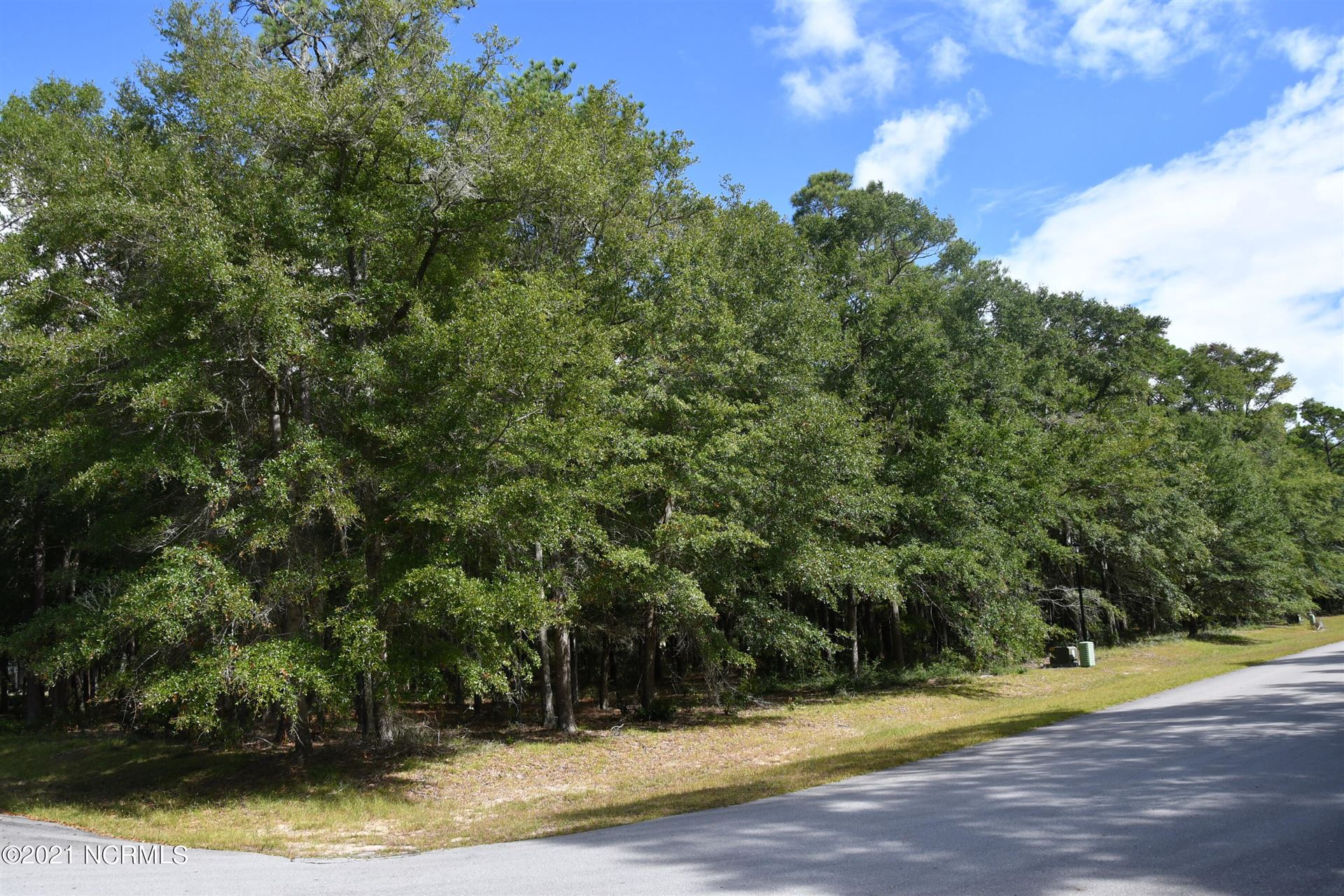 Photo of 3472 Eagle Crest Drive SW, Supply, NC 28462 (MLS # 100293873)