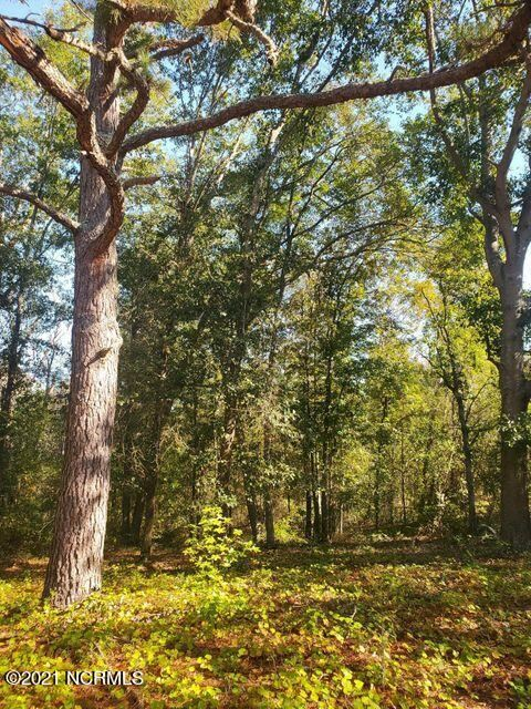 Photo of Tbd Abrams Drive, Rockingham, NC 28379 (MLS # 100296874)