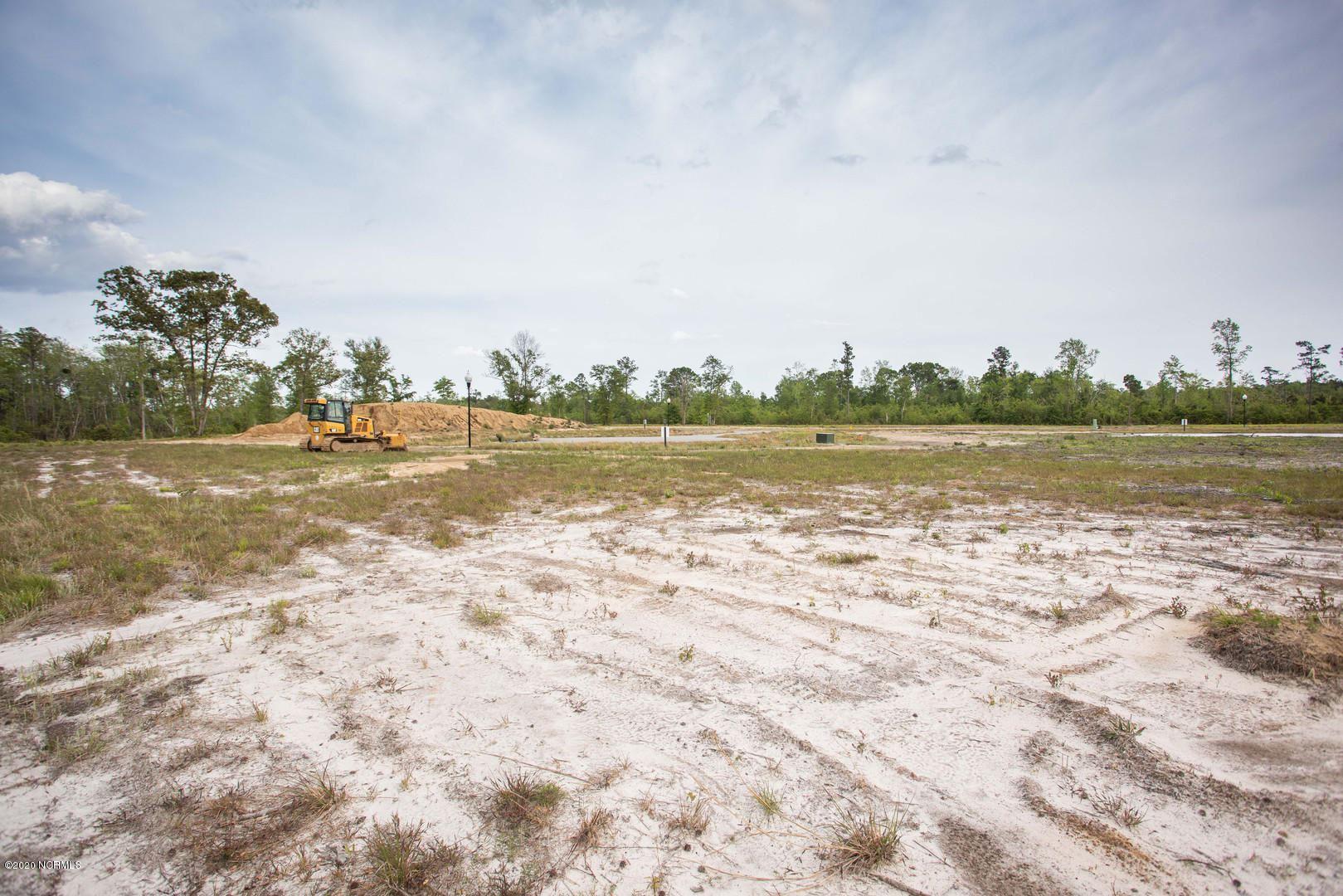Photo of 463 Sankey Court, Winnabow, NC 28479 (MLS # 100214881)