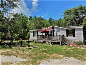 Photo of 3503 Blueberry Road, Currie, NC 28435 (MLS # 100177882)