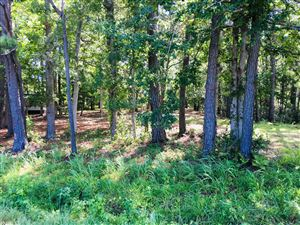 Photo of 2340 Kirby Road SW, Supply, NC 28462 (MLS # 100180885)