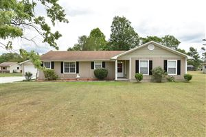 Photo of 607 Wolverine Place, Jacksonville, NC 28546 (MLS # 100169887)