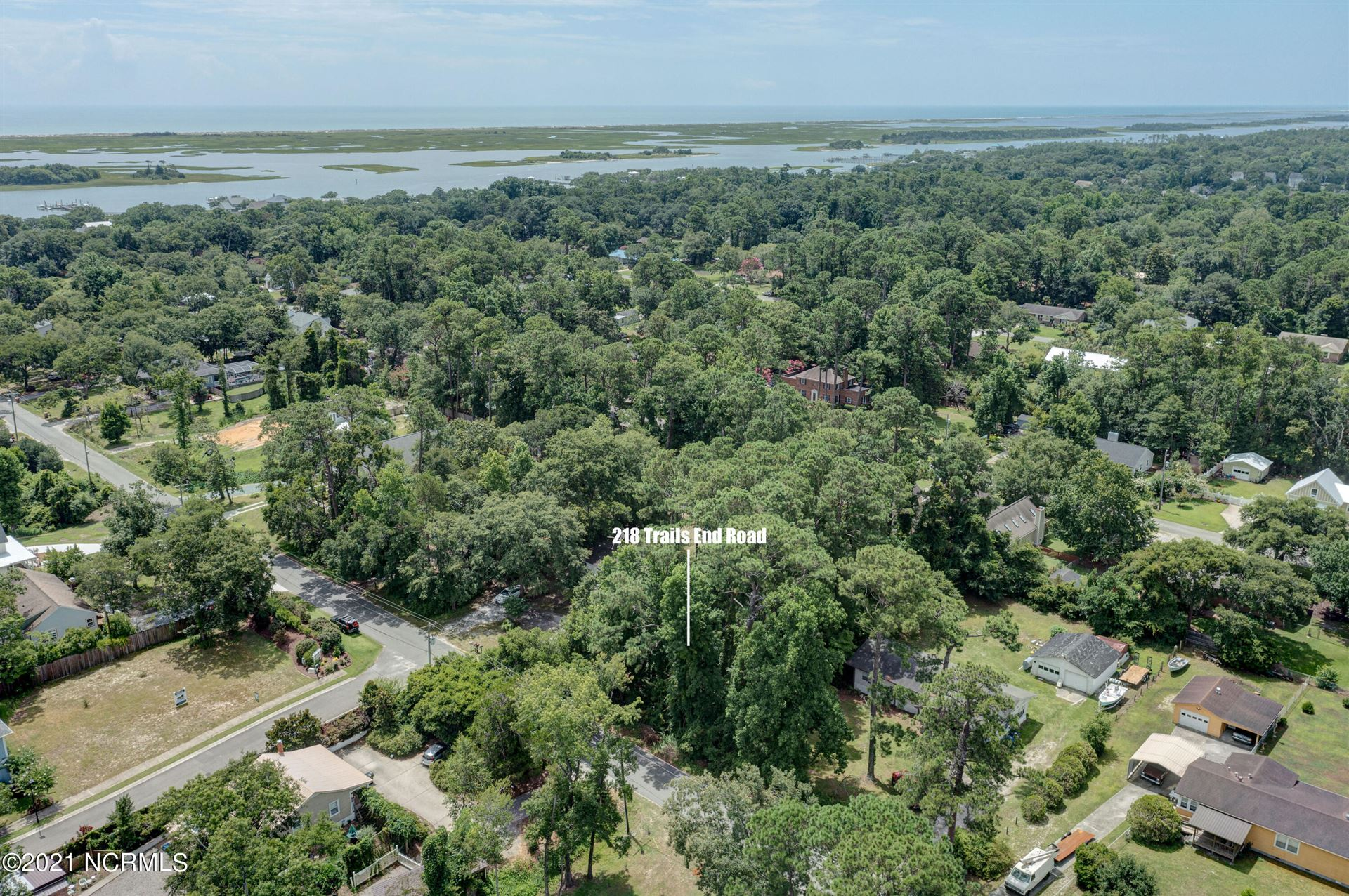 Photo of 218 Trails End Road, Wilmington, NC 28412 (MLS # 100291891)