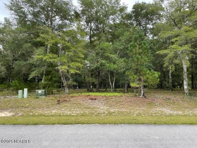 Photo of 2019 Bluefin Terrace SW, Supply, NC 28462 (MLS # 100294891)