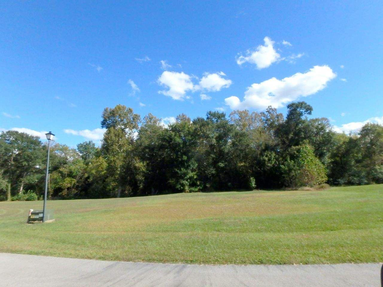 Photo of 203 Lazy River Court, Jacksonville, NC 28540 (MLS # 100253903)