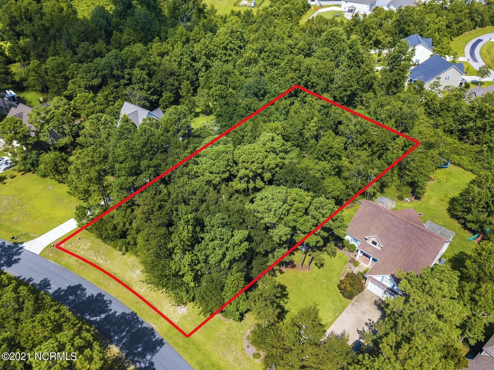 Photo for 181 Marina Wynd Way, Sneads Ferry, NC 28460 (MLS # 100285907)