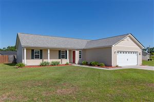 Photo of 218 Wingspread Lane, Beulaville, NC 28518 (MLS # 100170908)