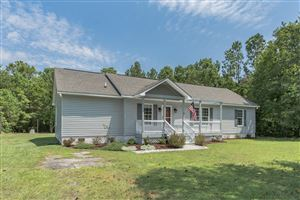 Photo of 316 Scotch Bonnet Way, Hampstead, NC 28443 (MLS # 100177908)