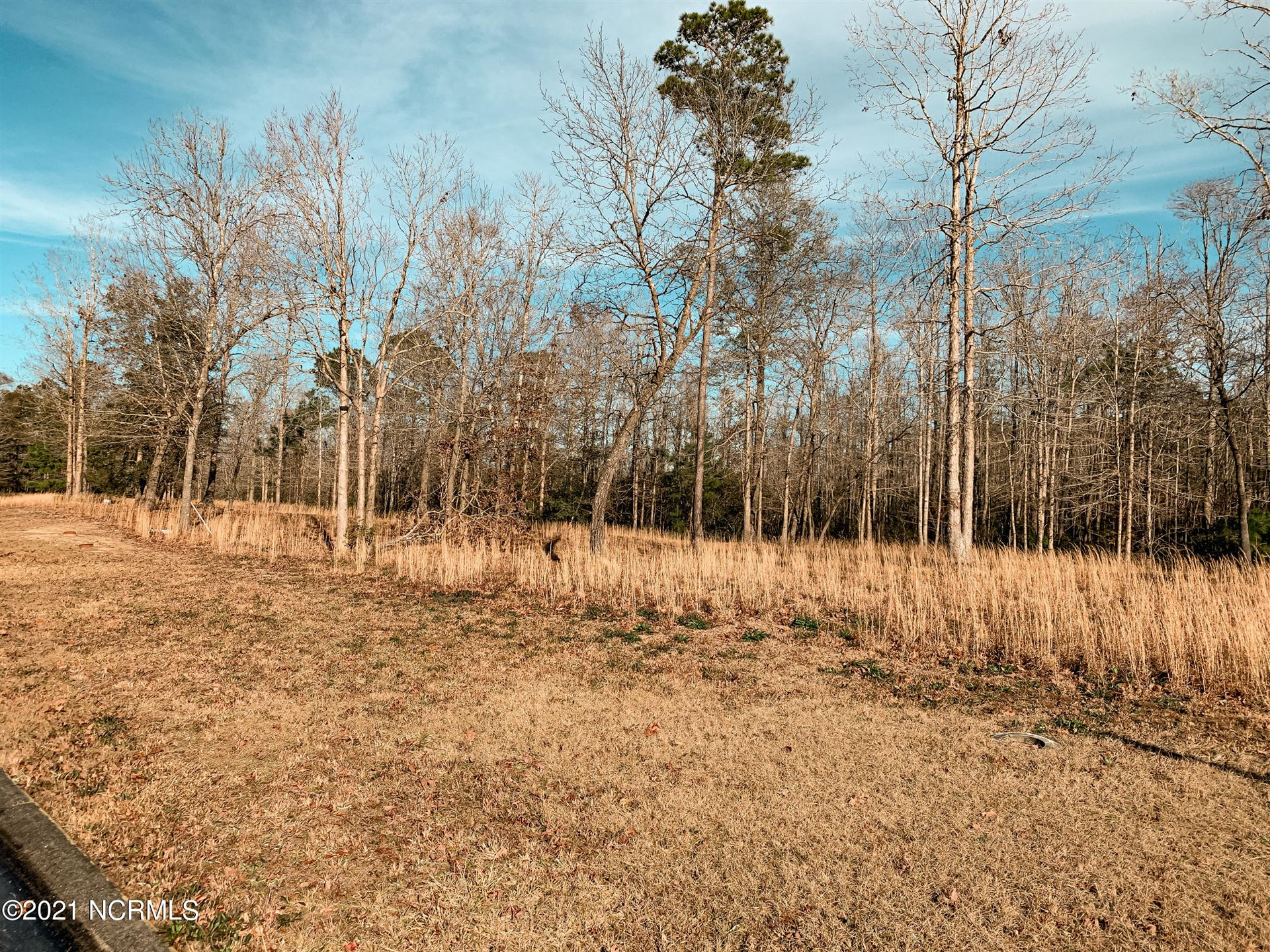 Photo of 554 & 560 Sactucary Point SW, Supply, NC 28462 (MLS # 100252911)