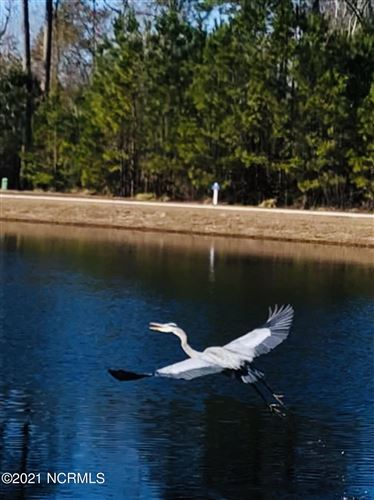 Photo of 9220 Fallen Pear Ln Lane NE, Leland, NC 28451 (MLS # 100259913)