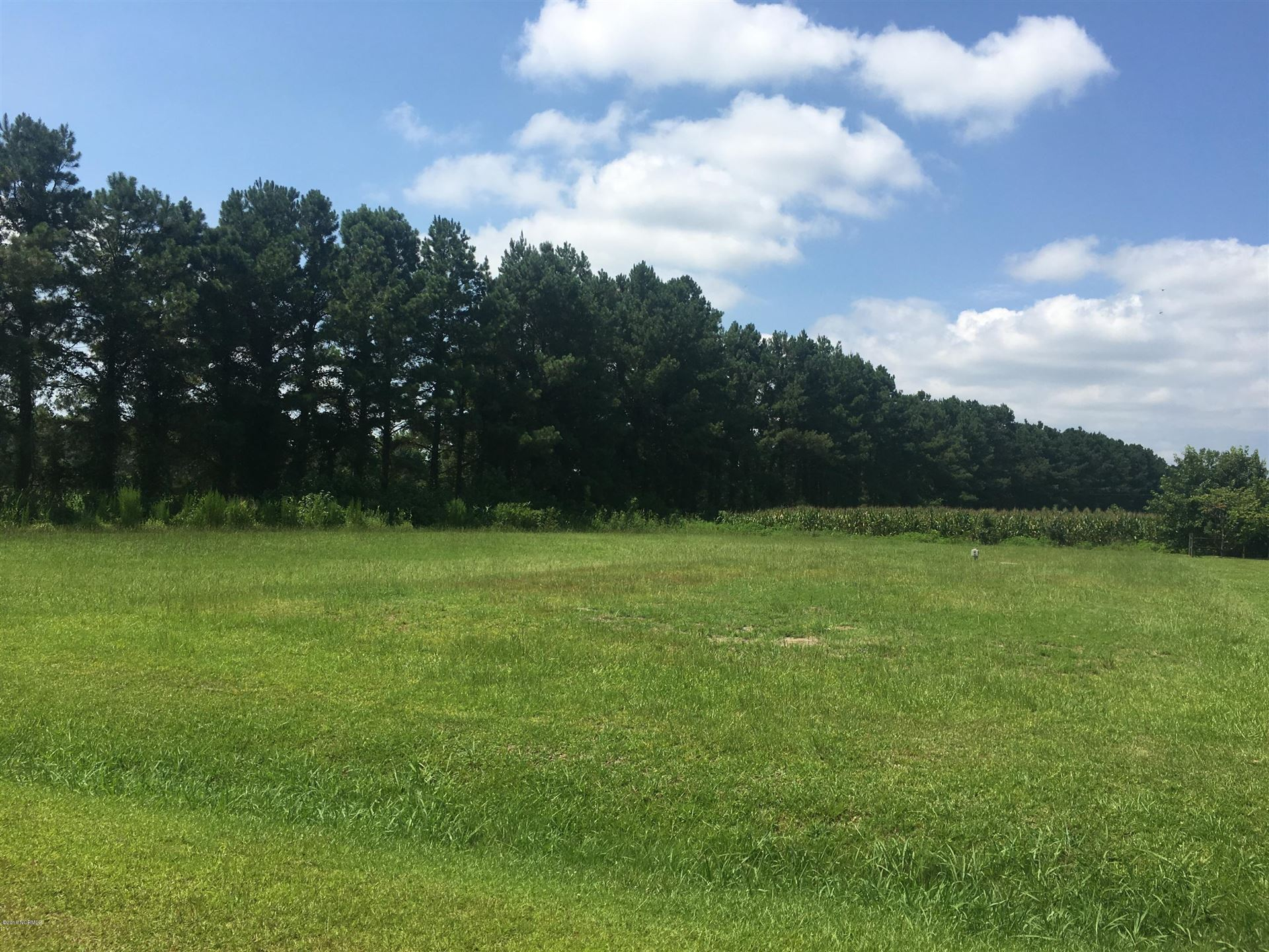 Photo of 127 Eastwood Drive, Wallace, NC 28466 (MLS # 100021922)