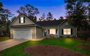 Photo of 40 Feather Lane, Rocky Point, NC 28457 (MLS # 100189924)