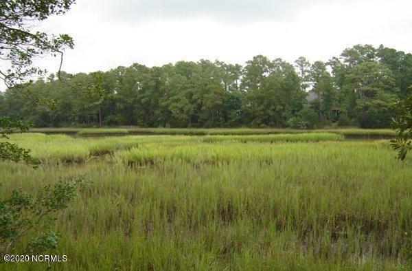 Photo of 511 Goose Creek Court, Wilmington, NC 28411 (MLS # 100243925)