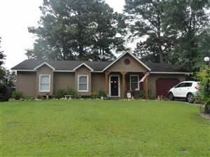 Photo of 113 Broadleaf Drive, Jacksonville, NC 28546 (MLS # 100168926)
