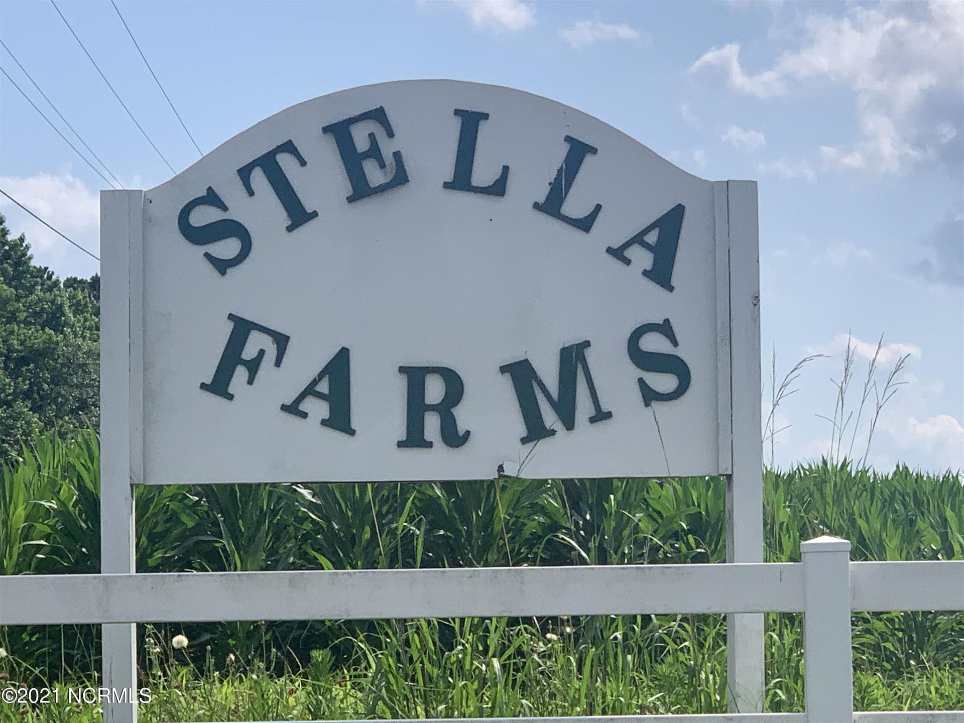 Photo of 205 Magnolia Drive, Stella, NC 28582 (MLS # 100277926)