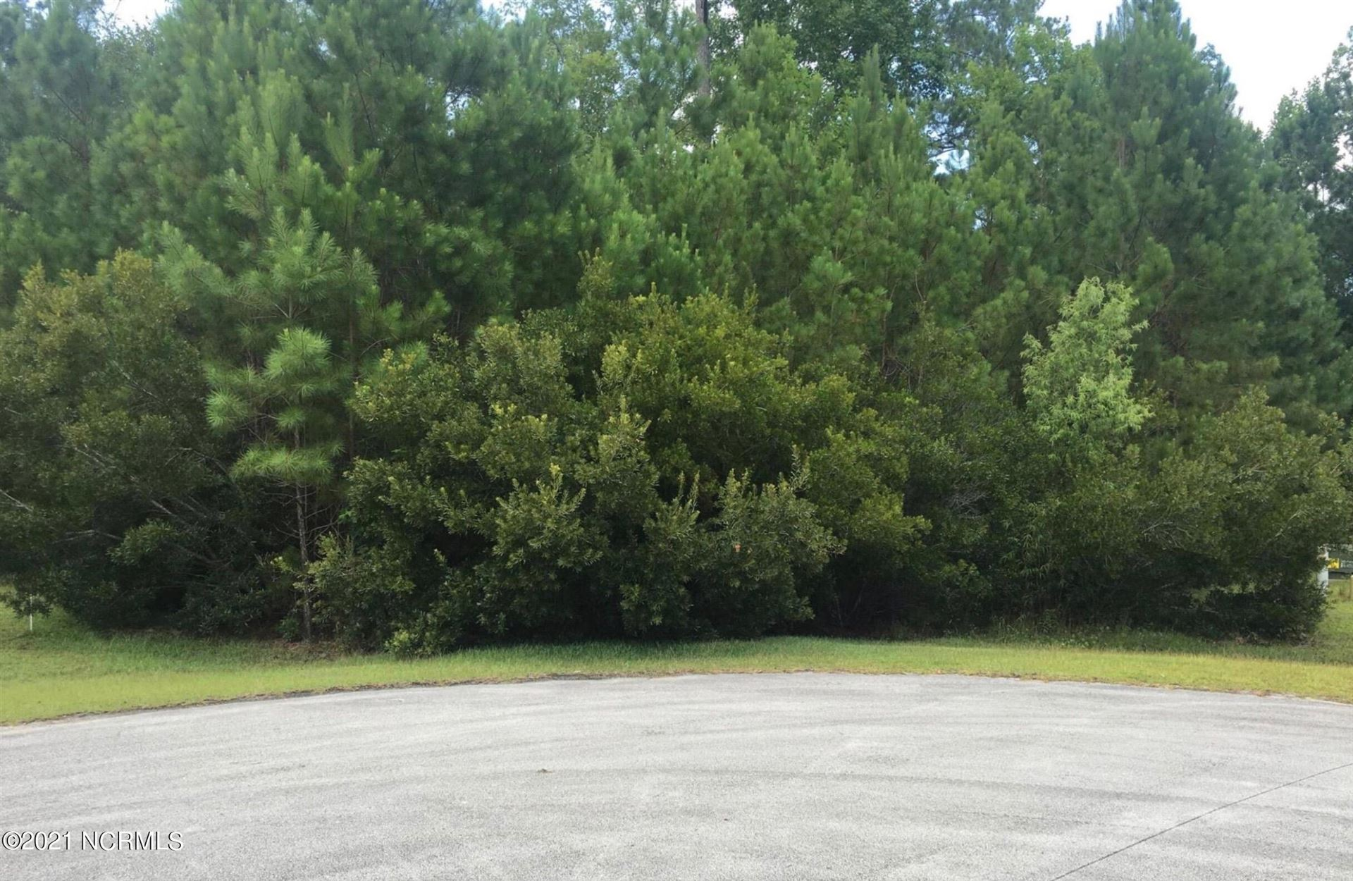 Photo of 102 Blue Jay Way, Stella, NC 28582 (MLS # 100294928)