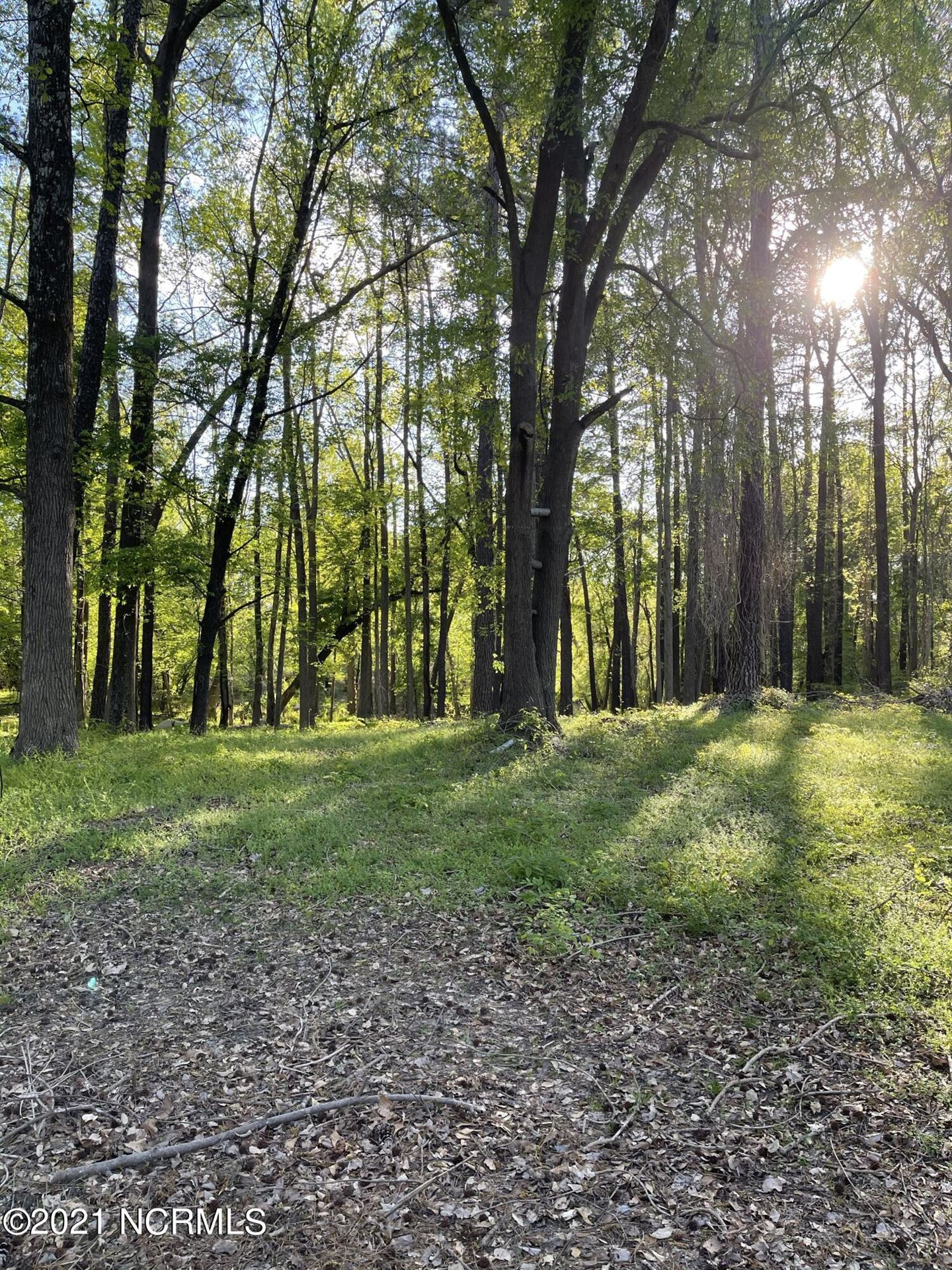 Photo of 69 Mockingbird Lane, Rocky Mount, NC 27804 (MLS # 100265930)