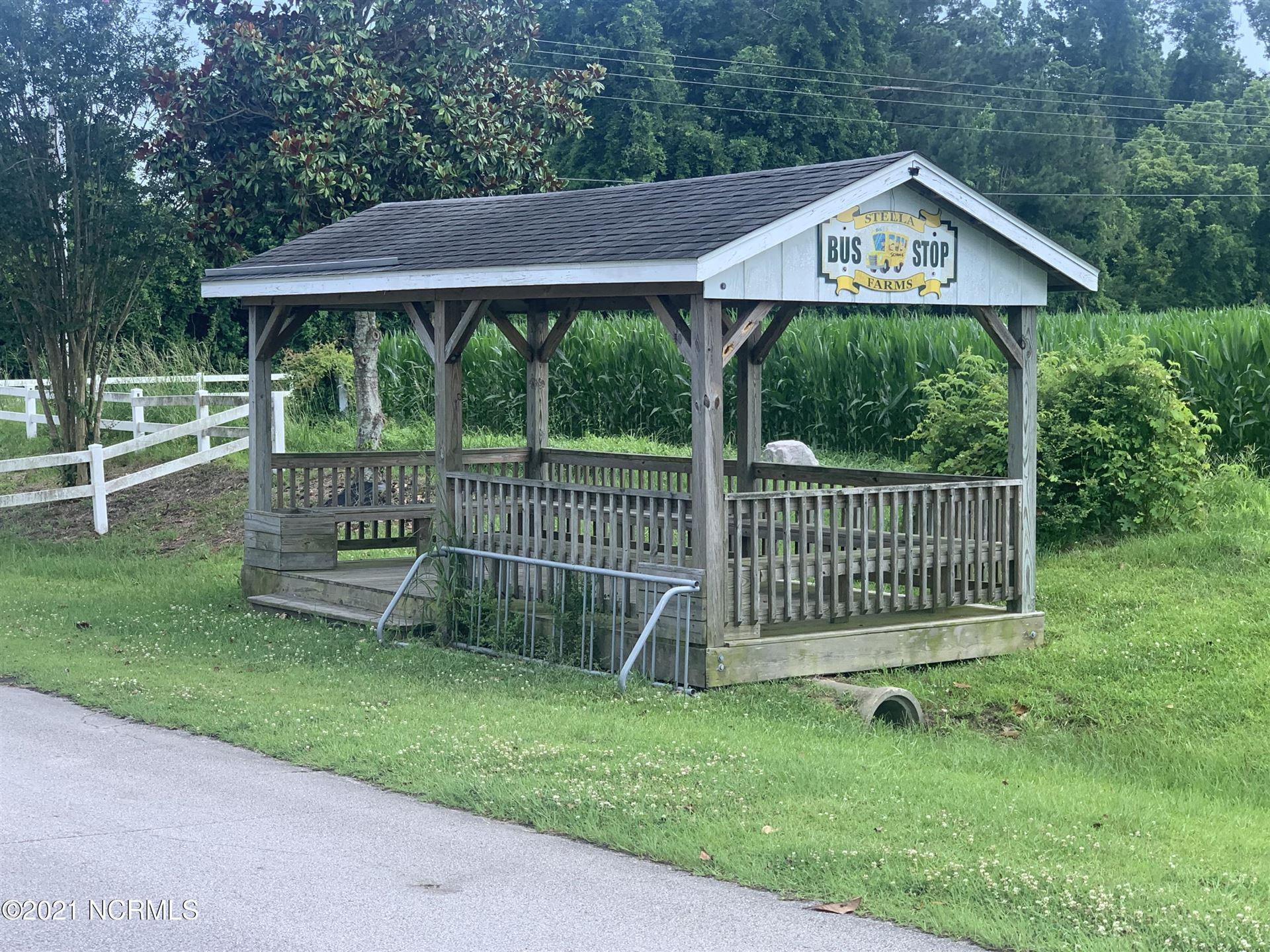 Photo of 209 Magnolia Drive, Stella, NC 28582 (MLS # 100277931)