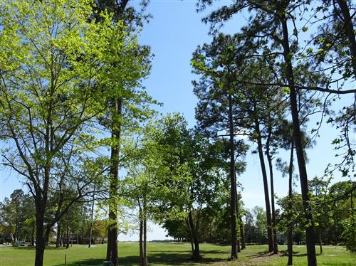 Photo of 115 Genoes Point Road SW, Supply, NC 28462 (MLS # 100174932)