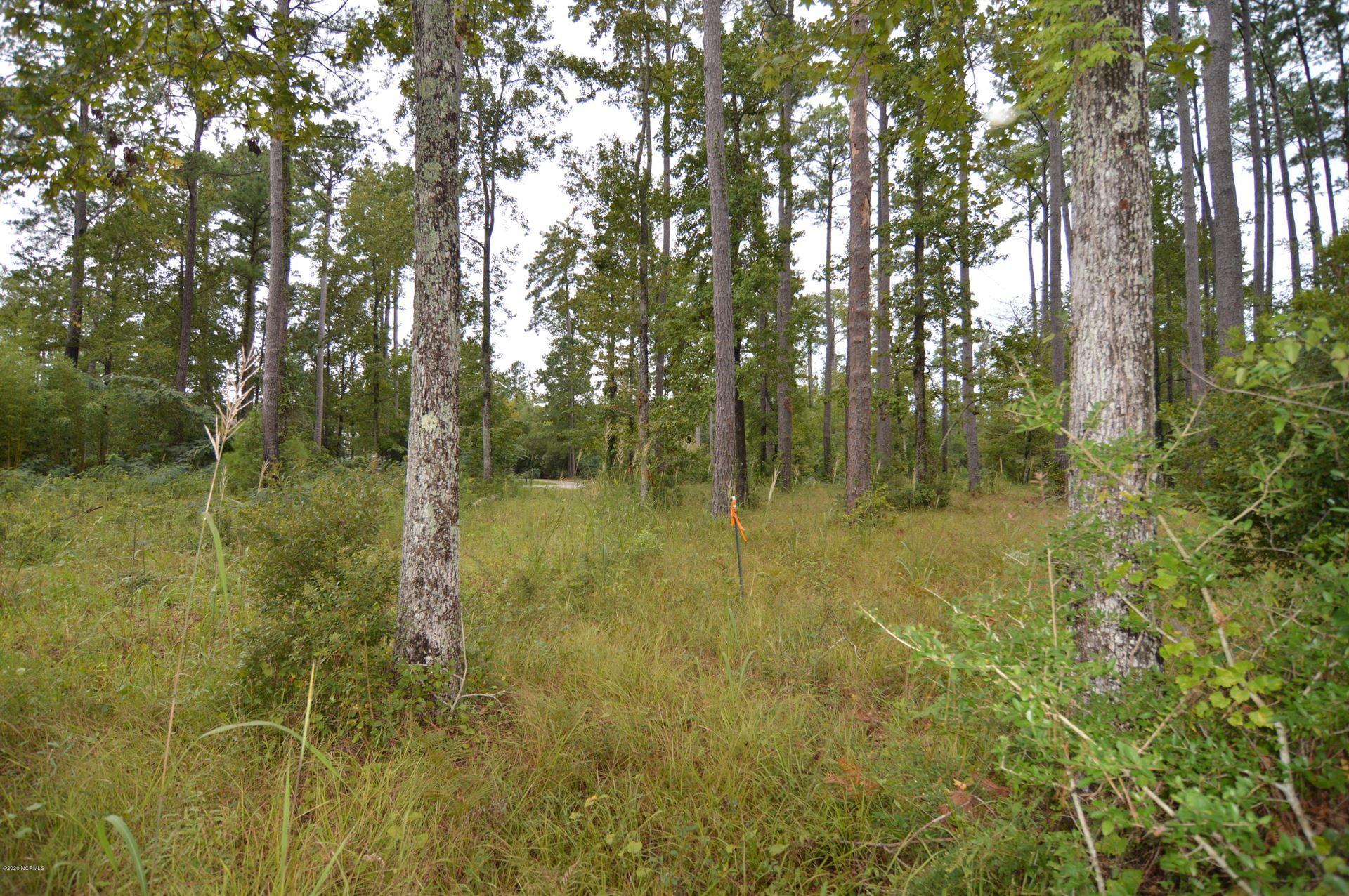 Photo of 155 Cummins Creek Road, Beaufort, NC 28516 (MLS # 100238933)