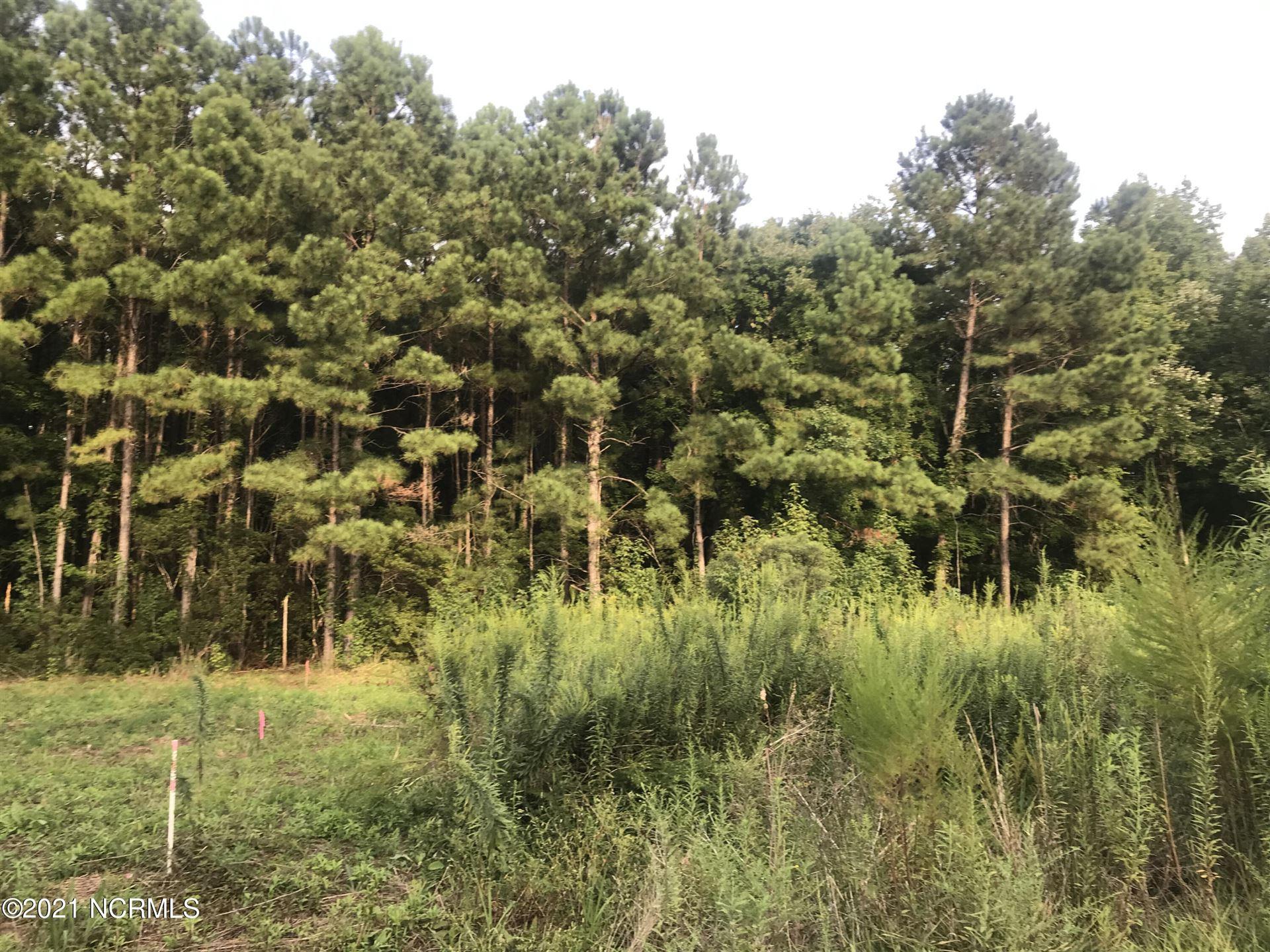 Photo of 140 Wildwood Drive, Oriental, NC 28571 (MLS # 100289933)