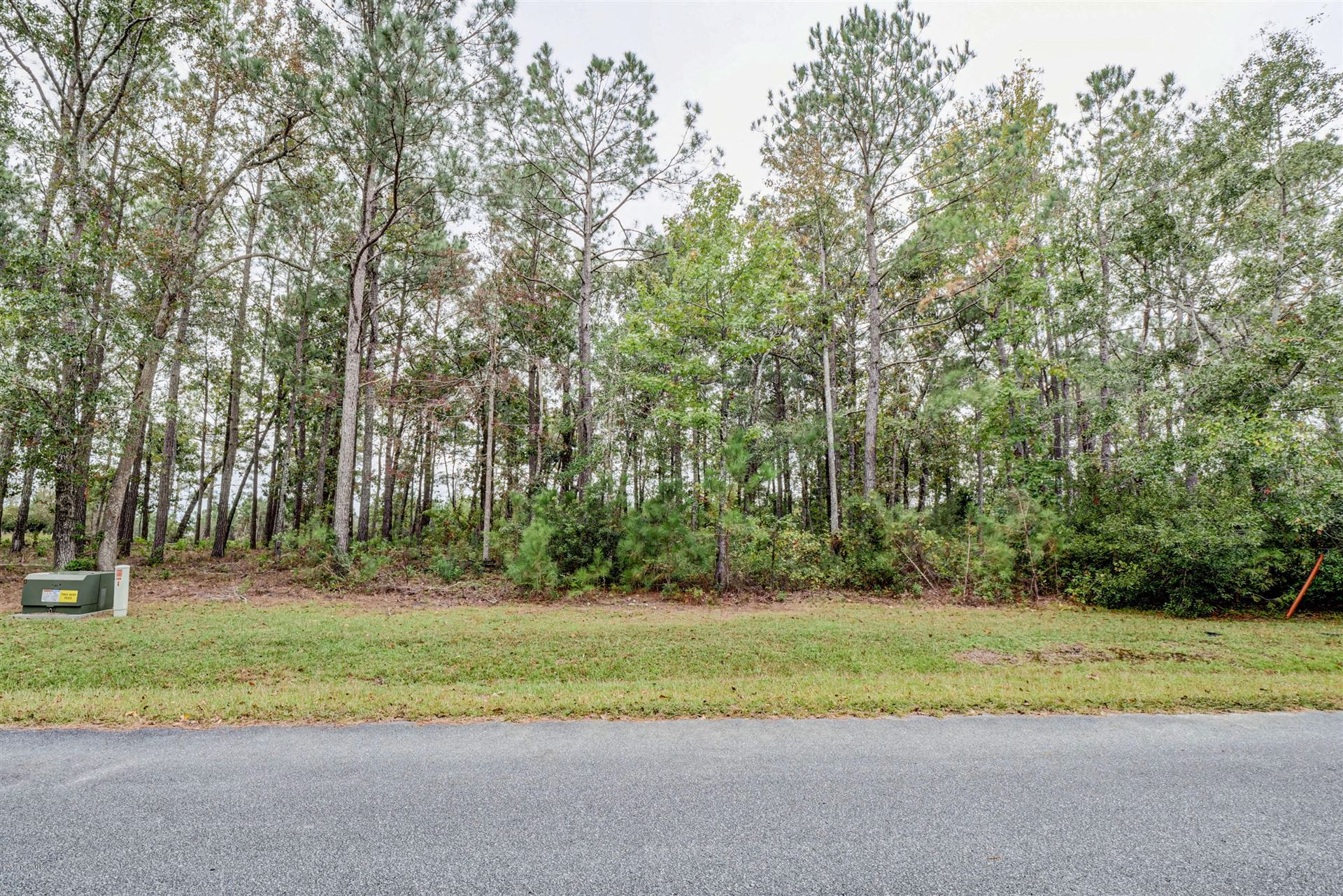 Photo of 247 Mimosa Drive, Sneads Ferry, NC 28460 (MLS # 100295934)