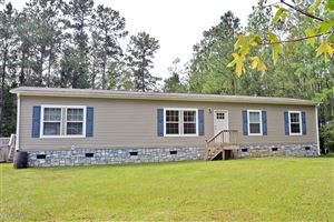 Photo of 125 Deepwoods Ridge, Rocky Point, NC 28457 (MLS # 100186935)