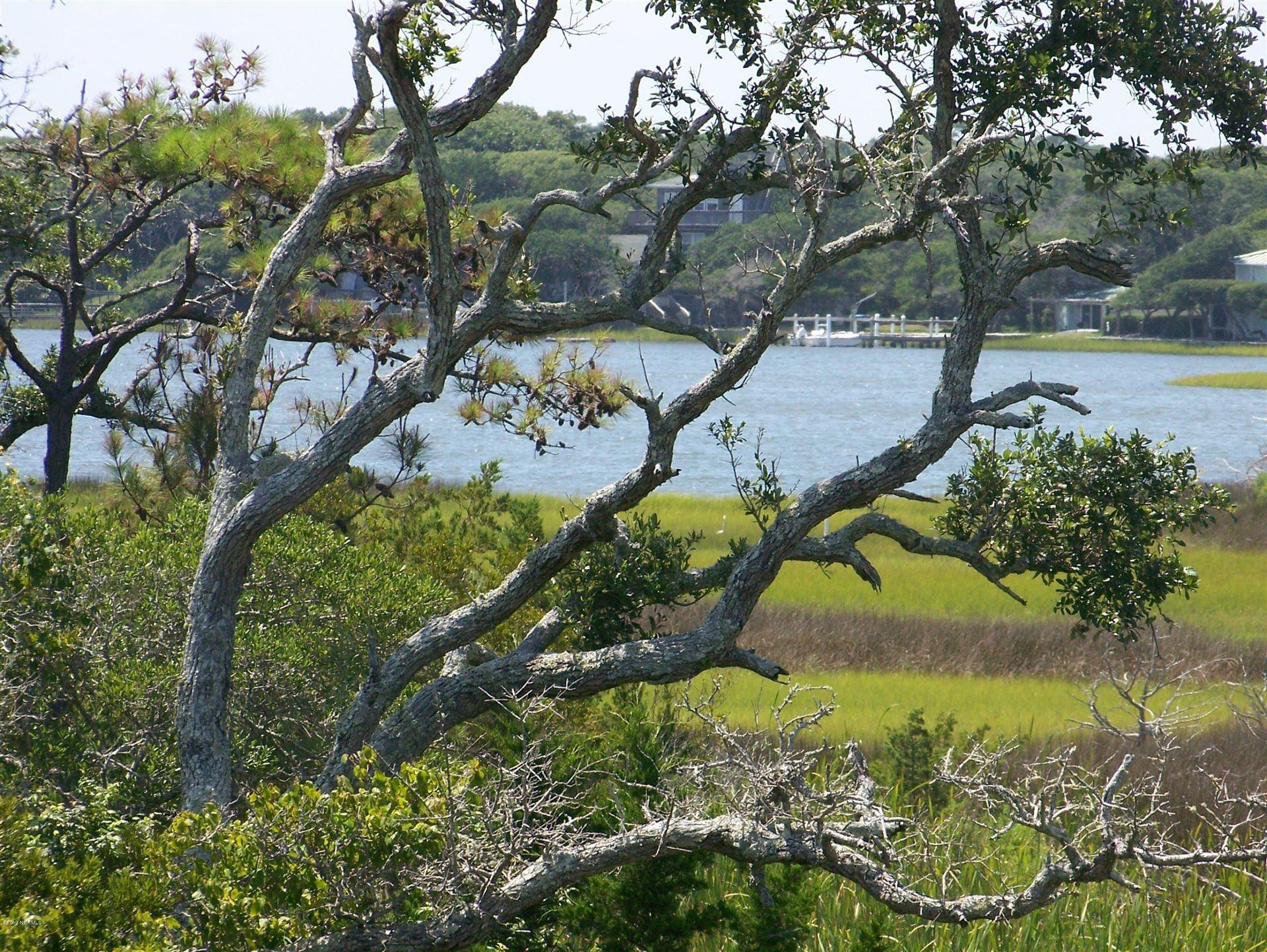 Photo of 125 Coral Bay Court, Atlantic Beach, NC 28512 (MLS # 100168935)