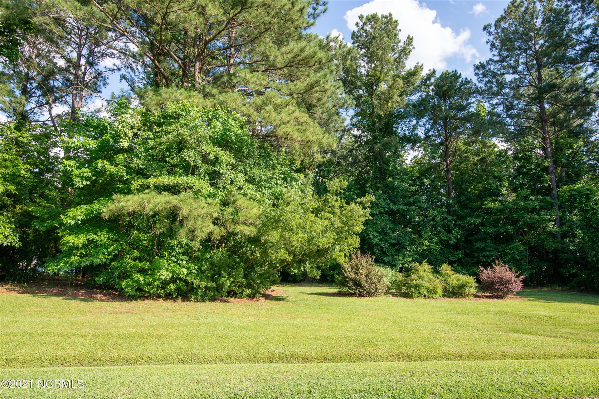 Photo of 246 Country Squire Lane, Jacksonville, NC 28540 (MLS # 100277943)