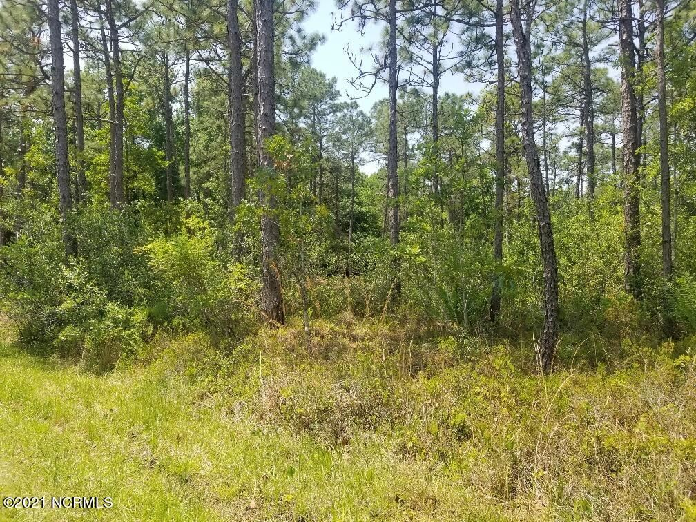 Photo of 1224 Woodcrest Road, Southport, NC 28461 (MLS # 100274950)