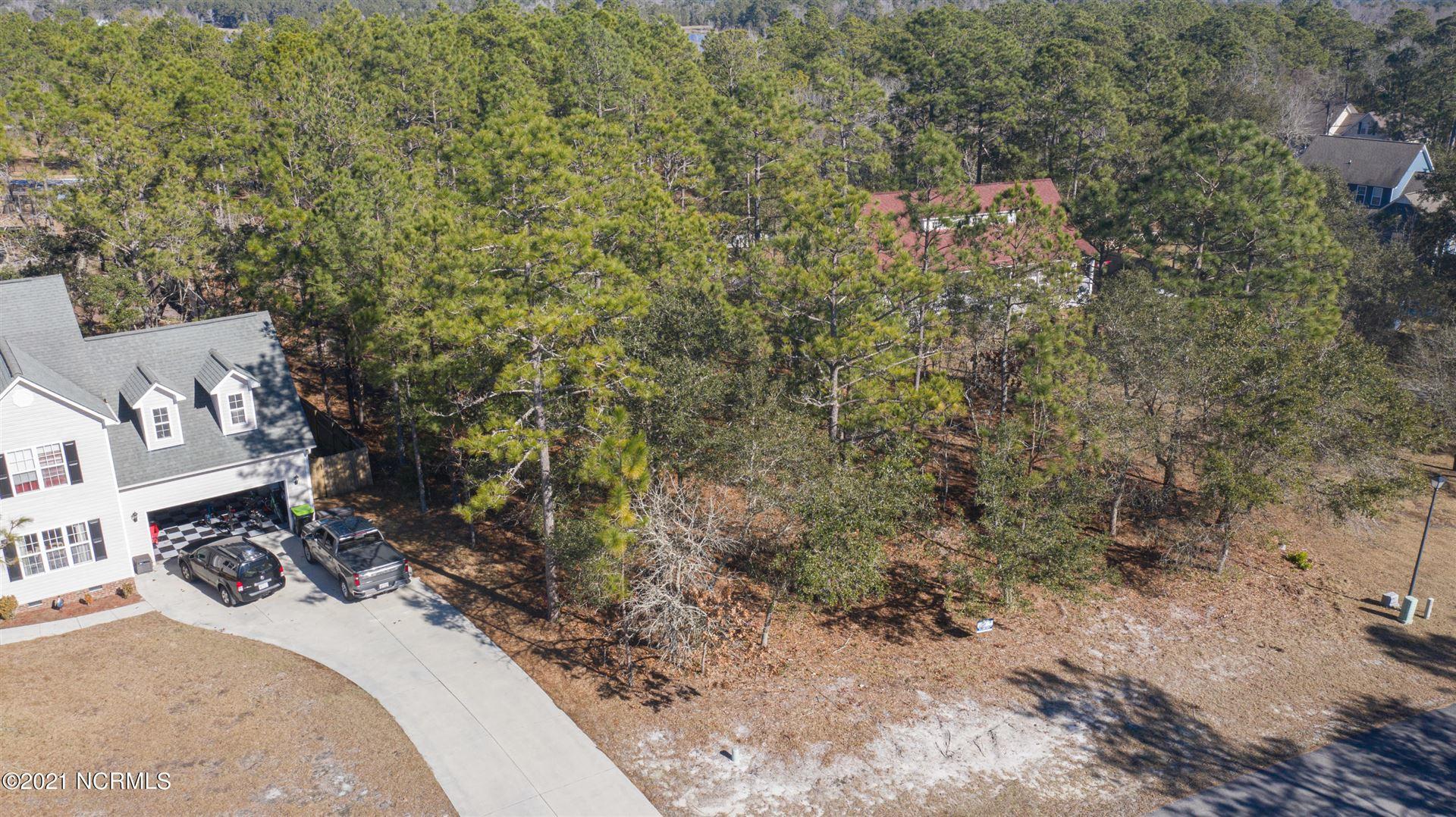 Photo of 504 Oak Pond Point, Hubert, NC 28539 (MLS # 100005951)