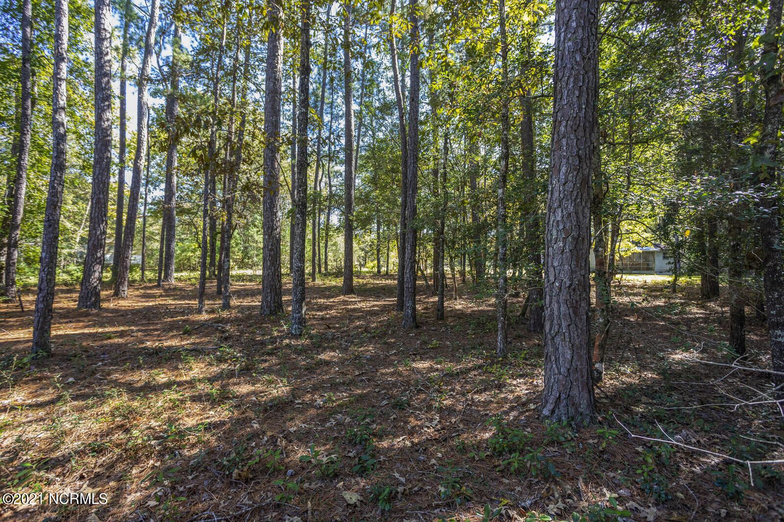 Photo of 1203 Ocean Trail Court SW, Supply, NC 28462 (MLS # 100290956)